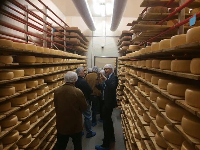 Einblick in das Käselager
