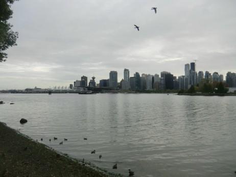 Stanley Park mit Blick auf Skyline Vancouver